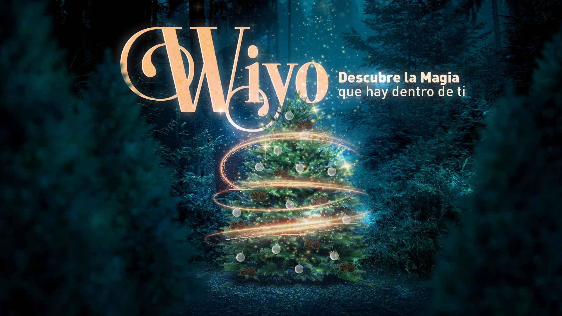 El-Bosque-del-ciclo-verde-Noel-carrusel-wiyo